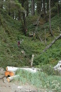 Rock Climbing Photo: It may be a hike along the coast, but you get plen...