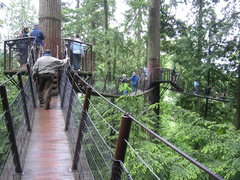 Rock Climbing Photo: The suspended walkways at the Capilano Suspension ...