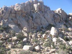 Rock Climbing Photo: Dairy Queen Wall