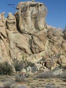 Rock Climbing Photo: Papaya Crack