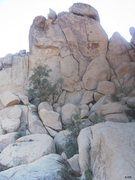 Rock Climbing Photo: North face of Banana Cracks