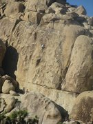 Rock Climbing Photo: Climber on Flake and Bake, with an uninterested gi...
