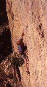 Rock Climbing Photo: Alex McPherson on The Mural.