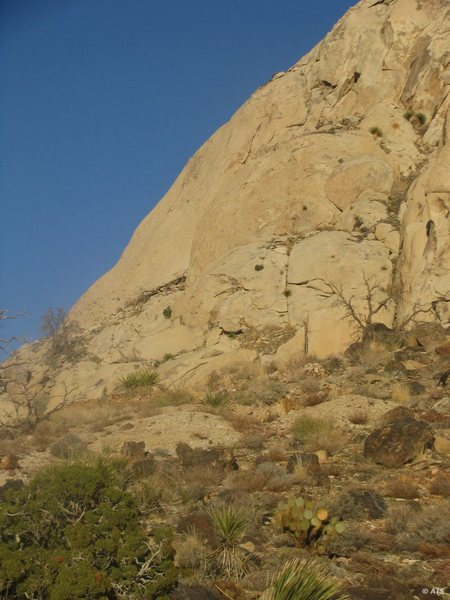 Rock Climbing Photo: Looking up to the Cowboy Crags from above the Oyst...
