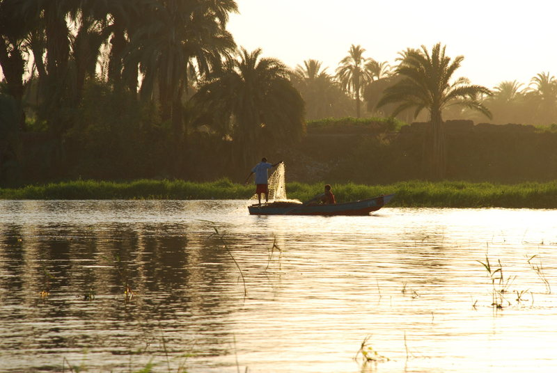 Along the Banks of the Nile, near Luxor, Egypt. July 2007
