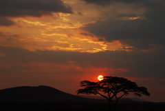 Rock Climbing Photo: A Serengeti Sunset after a day of bush fires. 2007...