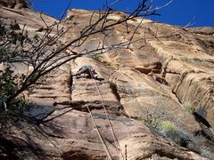 Rock Climbing Photo: Crux pitch?  Iron Messiah Zion