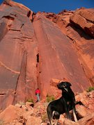 "Rock Climbing Photo: Samson keeping watch in front of ""Camping und..."