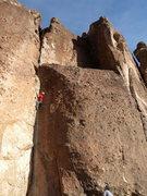 Rock Climbing Photo: Bay Tree Belay (5.7)
