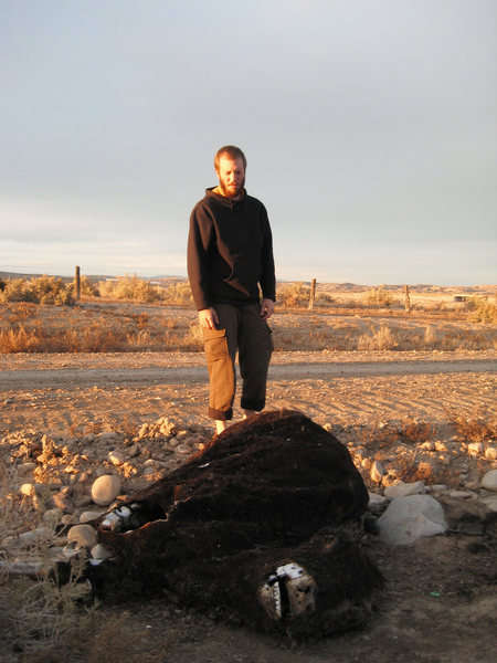 Rock Climbing Photo: Moab meat