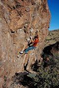 Rock Climbing Photo: Photo by Linda Wong