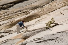 Rock Climbing Photo: Some guy stopped and set up this little stuffed bi...