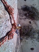 "Rock Climbing Photo: Easy to set up toprope for this and ""brimston..."
