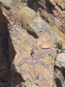 Rock Climbing Photo: Climbers on the Super Slab.  Photo: Bob Horan.
