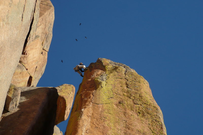 Pat Peddy leading Airborne Froth 5.11a with the birds checking out the action.