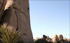 Rock Climbing Photo: Terry killing it.