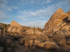 Rock Climbing Photo: Big Brother Boulders, Joshua Tree.