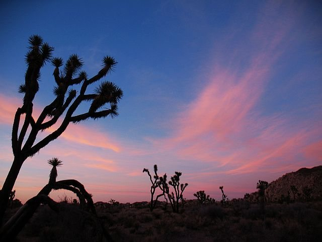 Nice light at Hall of Horrors, Joshua Tree NP