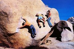 Steve Schneider, Banny Root and Mike Paul having fun on Stem Gem (V4), Joshua Tree. Photo by Alan Nelson.
