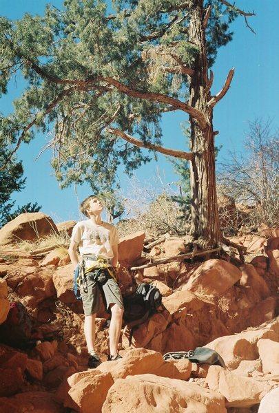 Rock Climbing Photo: at the base of grapefruit dance