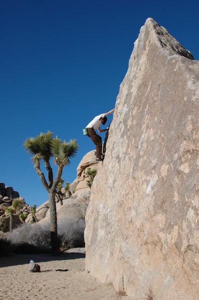 The Wedge boulder, Turtle Rock Circuit. Joshua Tree