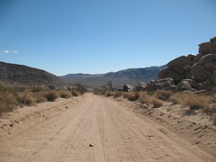 Rock Climbing Photo: Looking down the Geology Road, Joshua Tree NP