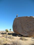 Rock Climbing Photo: On top of Slashface