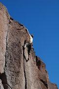 Rock Climbing Photo: Wheeler Dealer