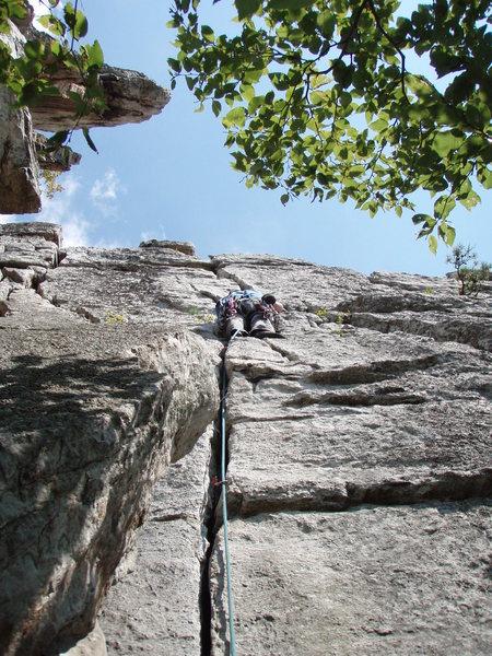 Rock Climbing Photo: Leading Kritter Crack