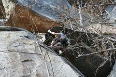 Rock Climbing Photo: Tim cranking through the FFA