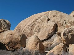 Rock Climbing Photo: Creature Feature Area, Joshua Tree NP