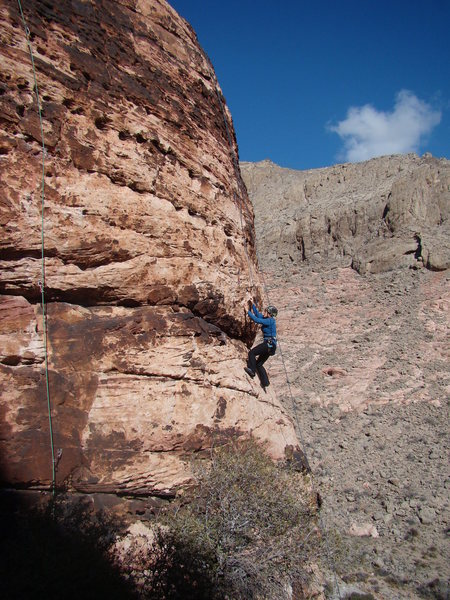 Rock Climbing Photo: Luanne on Family Affair