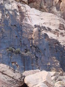 Rock Climbing Photo: The second pitch starts just right of the big bush...