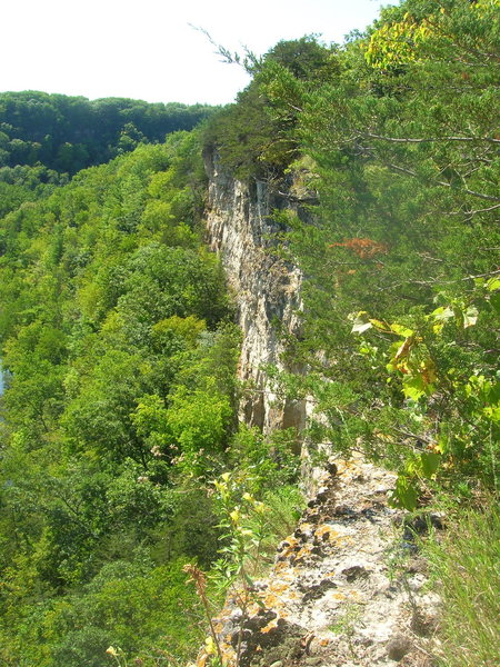 Rock Climbing Photo: SE MN5