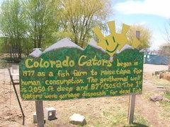 Rock Climbing Photo: GATORS IN COLORADO!?!?!? Gotta stop here if you ha...