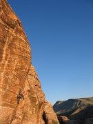 Rock Climbing Photo: Poodle Chainsaw Massacre - 5.11c