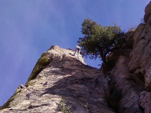 Rock Climbing Photo: Topping out on Bloody Mary (5.7), Mt Lemmon
