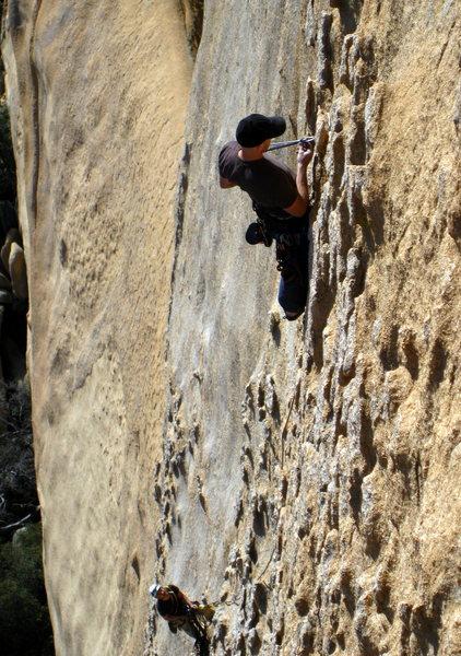 Rock Climbing Photo: What's My Line? Direct, 5.10R, Rockfellow Group, C...