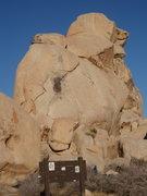 Rock Climbing Photo: Toe Jam, Hidden Valley Campground
