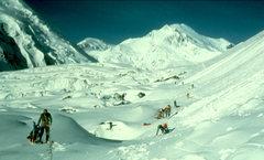 Rock Climbing Photo: Crevasses on Muldrow glacier. Denali.  A glacier i...