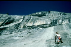 Rock Climbing Photo: El Cap. Free Blast. Yosemite