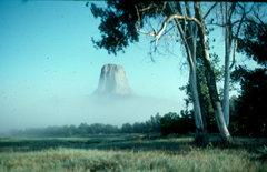 Rock Climbing Photo: Devil's Tower, WY
