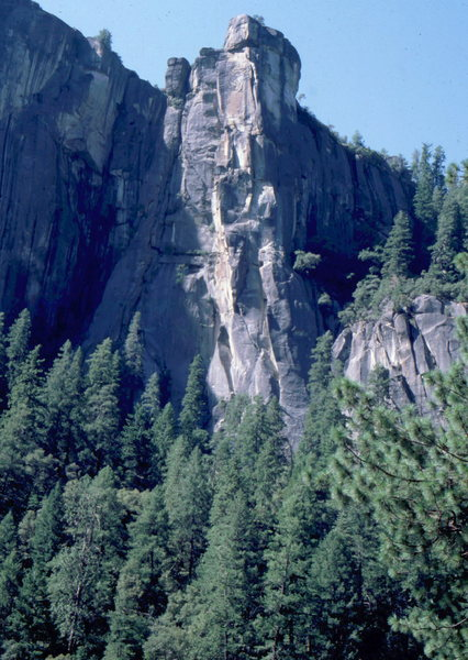 Rock Climbing Photo: The Rostrum, Yosemite Valley.