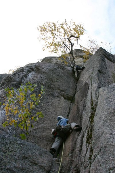 Tim Martel leading up the 3rd pitch jam crack... another climber above on the birch tree...