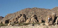 Rock Climbing Photo: Unknown boulder - Joshua Tree