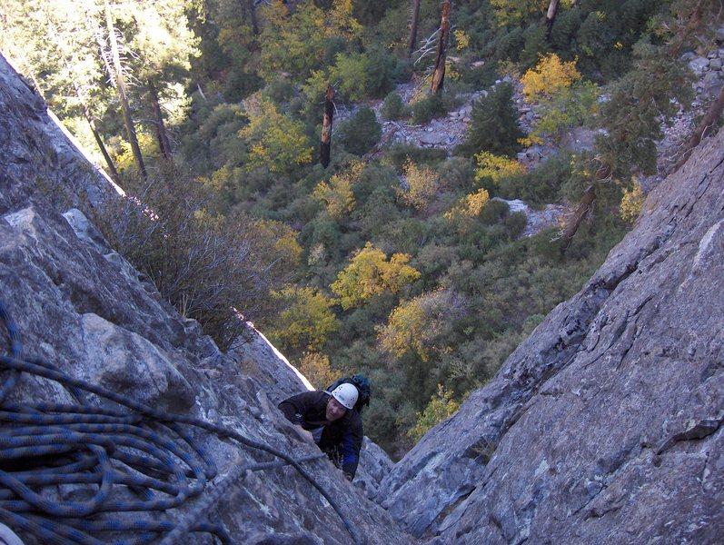 Rock Climbing Photo: Brad on Braille Book