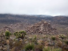 Rock Climbing Photo: Jerry's Quarry from the road, Joshua Tree NP