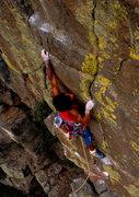 Rock Climbing Photo: Bob Horan trad on Hands of Destiny, Animal World.