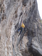 Rock Climbing Photo: Shawn mid crux.