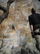 Rock Climbing Photo: Windows on top rope.  Quality route.  Solid 5.8.  ...